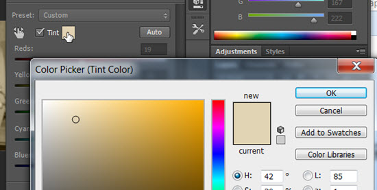 use tint option for duotone